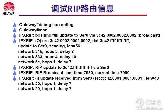 网络工程师之路_第八章|IPX协议及配置 19- 调试 RIP 路由信息.jpg