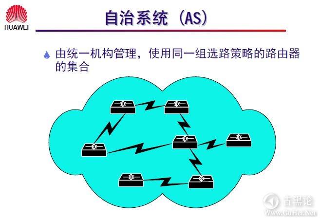 网络工程师之路_第十章|路由协议 7-自治系统.jpg