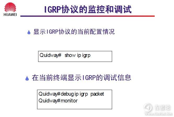 网络工程师之路_第十章|路由协议 38-IGRP 协议的监控和调试.jpg