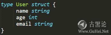 Java老头和新来的Go小子 3-struct.png