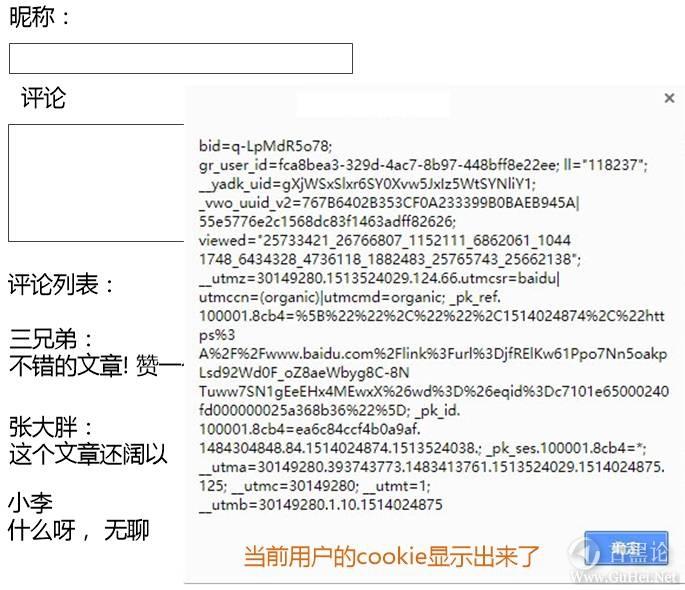 趣解 XSS和CSRF的原理 4-cookie.jpg