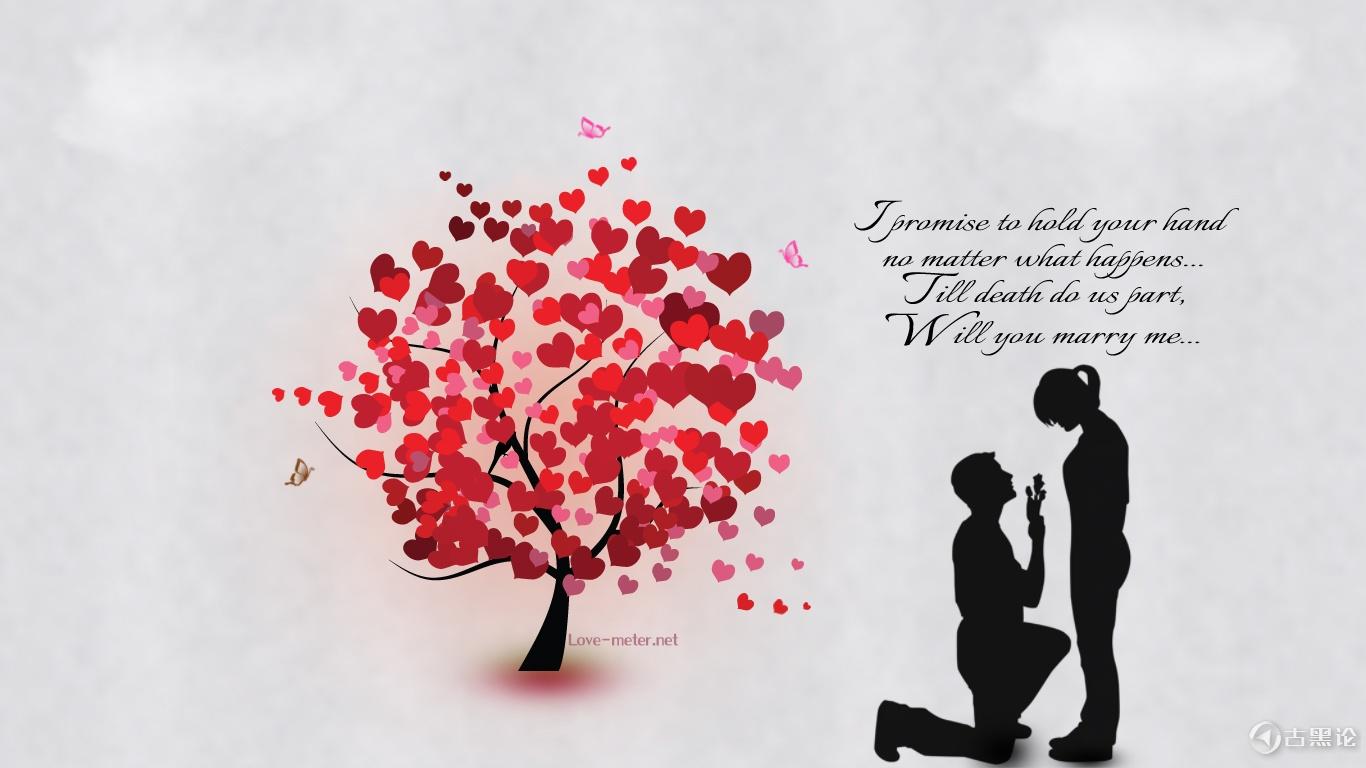 从赵丽颖在微博宣布结婚获得的启示 Will-You-Marry-Me-Quote-HD-Wallpaper.jpg
