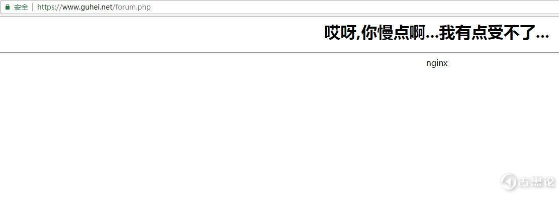 nginx 简单防CC攻击 Img-7.jpg