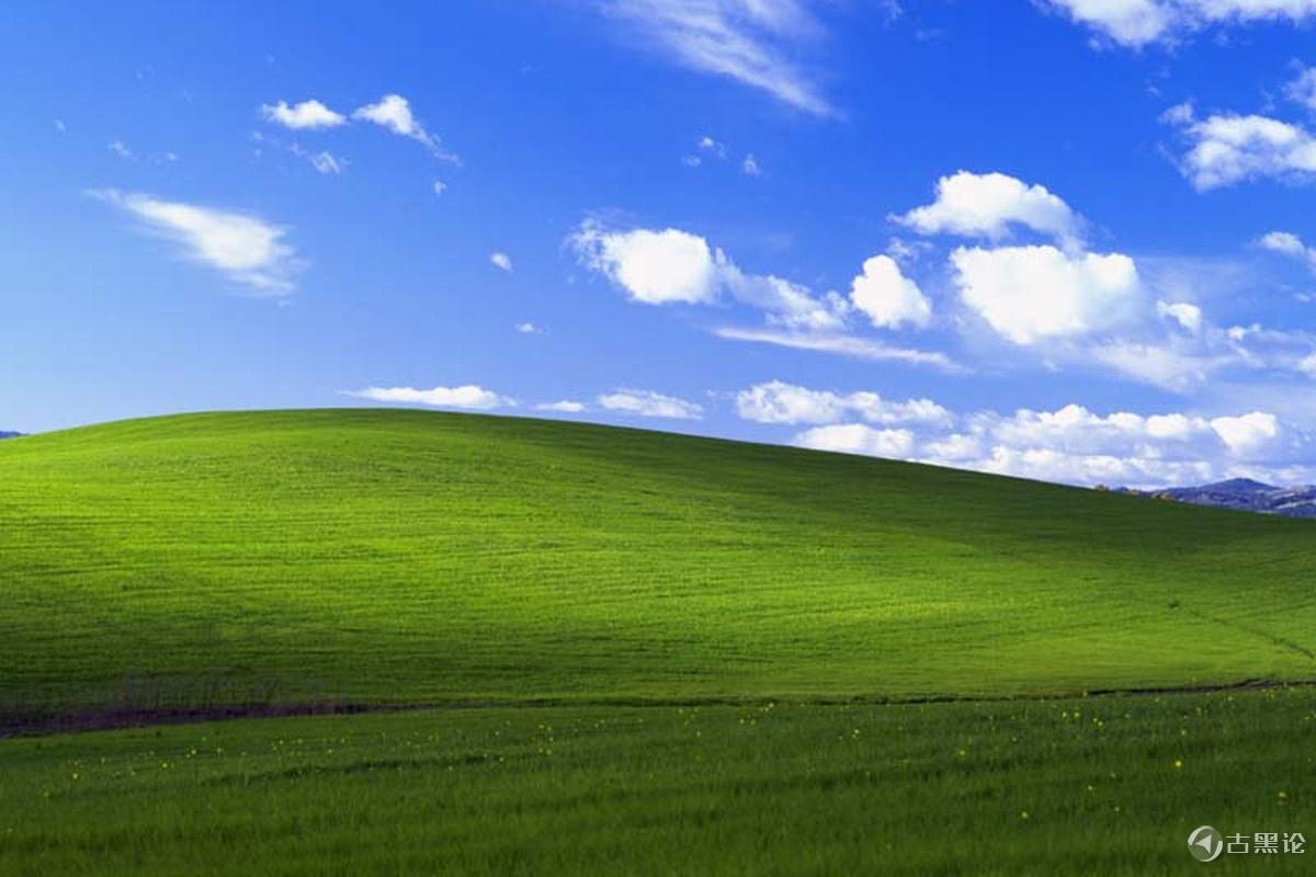 三分之一的企业仍然使用 Windows XP Bliss.1497349801.png