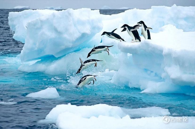 冰块体积膨胀的重大意义 129811452_15184053398381n.jpg