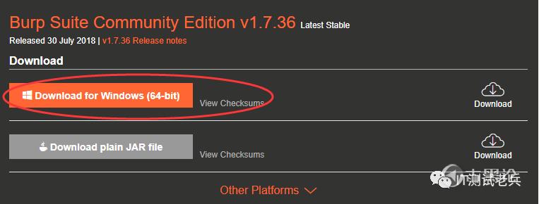 【修正帖】BurpSuite安装和破解,修正下截图显示错误 4.png