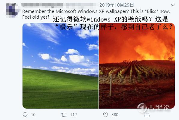 Windows XP默认壁纸的传说 21.png
