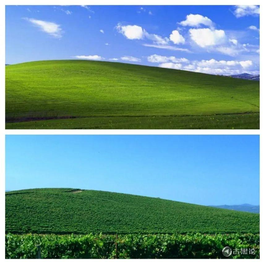 Windows XP默认壁纸的传说 27.jpg