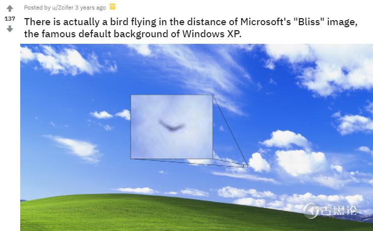 Windows XP默认壁纸的传说 32.png